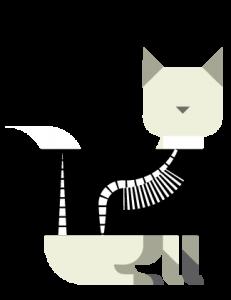 3a_gatto-radiografato