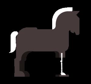 cavallo_b_radio